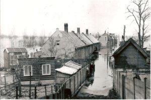 HVS Bosstoep 1953